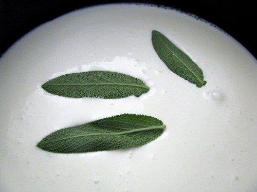 Sage leaves in cream